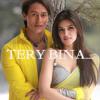 Tere Bina by Mustafa Zahid | Hero panti