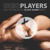 Ohio Players - Love Rollercoaster (Black Rabbit Remix)