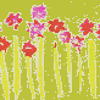 Crece kiwicha - Gabriela Loria