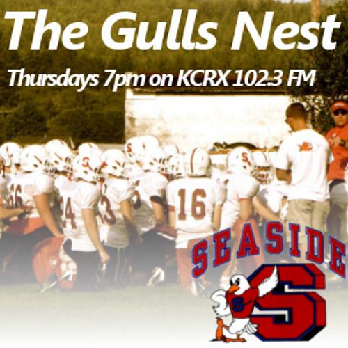 The Gulls Nest 051 - 5.29.2014