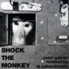 Shock the Monkey (dj addambombb's electroclash therapy mix 2014)