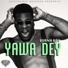 Burna Boy - Yawa Dey Remix (By John Vivas)