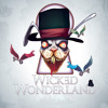 Wicked Wonderland 2014 - Martin Tungevaag