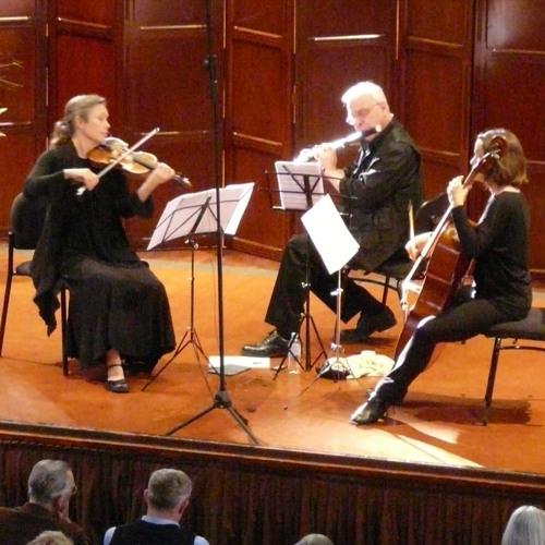 Haydn Divertimento 4 - 2. Scherzo