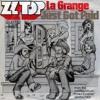 ZZ Top - La Grange (Irregular Sound Remix)