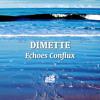 DIMETTE - Echoes Conflux (bassmusik017)