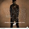 Avicii Ft. aloe black - Wake me up (Fusion deep house remix)