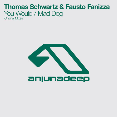 Thomas Schwartz & Fausto Fanizza - You Would
