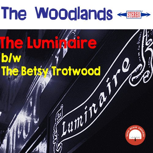 THE BETSY TROTWOOD by The Woodlands