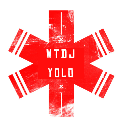 WTDJ - YOLO (Basslickers Remix) [ALIEN MILITIA]