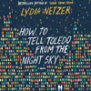 How to Tell Toledo from the Night Sky by Lydia Netzer audiobook - Chapter 1