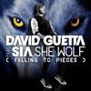 Demo - David Guetta Ft Sia - She Wolf (Dj Miguel Arias Remix 2014)No Master