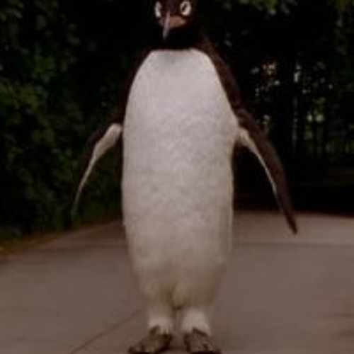 IT'S TOO DAMN HOT FOR A PENGUIN TO BE JUST WALKING AROUND HERE