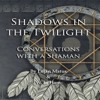 Shadows in the Twilight: Conversations With A Shaman - audiobook sample