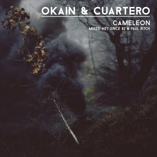 Okain & Cuartero - Cameleon (Hot Since 82 Remix)