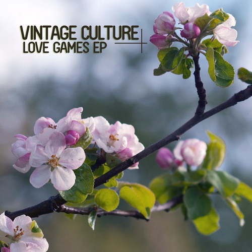 Vintage Culture, Thomaz Krauze feat TK Wonder - Love Games
