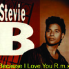 Stevie-B Because I Love You R.m.x