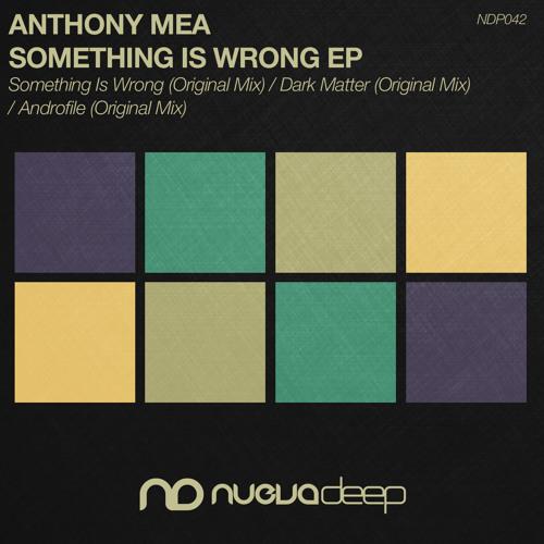 [NDP042] Anthony Mea - Androfile (Original Mix)
