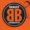 Shaggy - Mr. Bombastic [ Dj Jeanp 2014 ] - 080