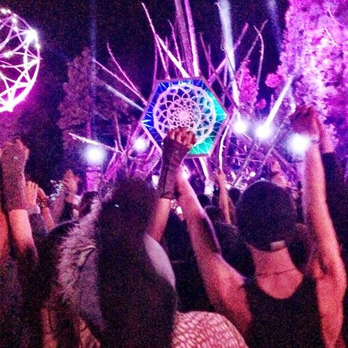 Live At Enchanted Forest 2014