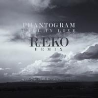 Phantogram Fall In Love (RAEKO Remix) Artwork