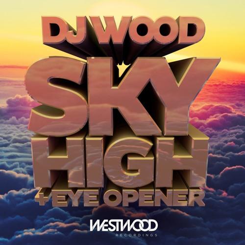 DJ Wood - Sky High (Original Mix)