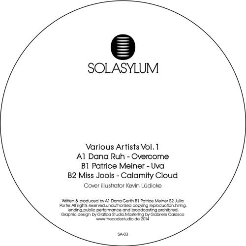 B1. Sol Asylum 03 - Patrice Meiner - UVA