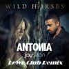 Antonia feat Jay Sean-Wild Horse (LeWo Club Remix)