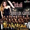 Como Los Gatos - La Trakalosa De Monterrey y Xitlali Sarmiento Portada del disco