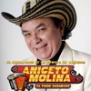 Aniceto Molina Mix - Deejay Tonio (Puras Cumbias)