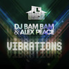 DJ Bam Bam - Vibrations (Frenzy & DJ Richie Rich Remix)
