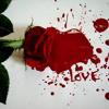 Shahrokh - Kare Del + Lyrics 1080p کار دل - شاهرخ