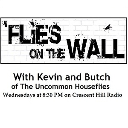 Flies on The Wall - 06.04.14