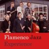 Flamenco Jazz Experience La Luz De Tus Ojos