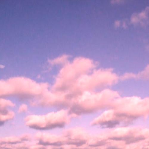 Siamese Lives / Lavender