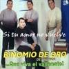 Binomio de Oro - Si Tu Amor No Vuelve (Kelvin Parra Remix)