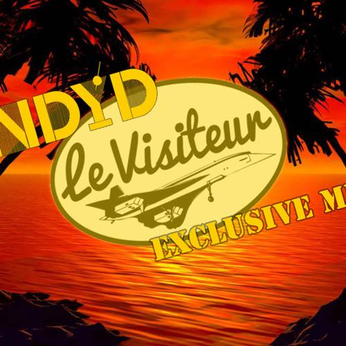 Le Visiteur - Nu Disco Your Disco Exclusive Mix (June 2014)