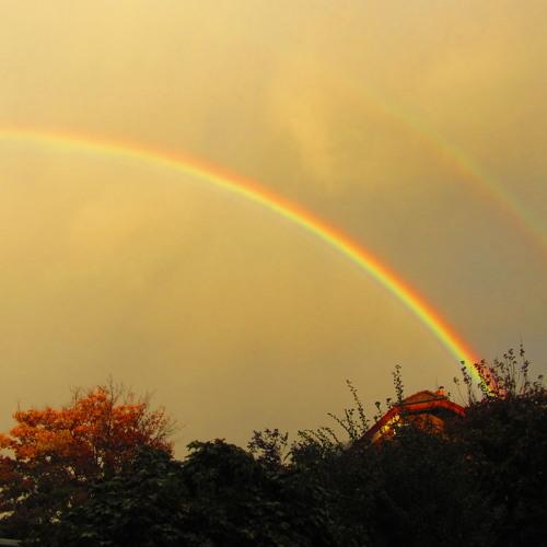Love is like a rainbow*