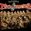 Despertando En Otra Cama || Banda Triguera || Estudio 2014 - from YouTube.mp3