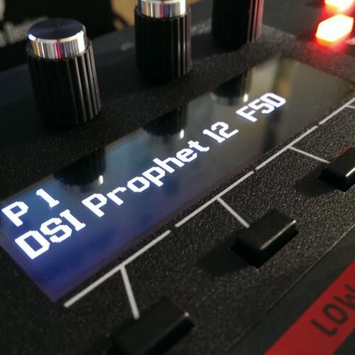 Prophet 12 Demo