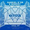 Gabriel D`or & Bordoy - Azul (Djeep Rhythms Remix) Elrow Music Records