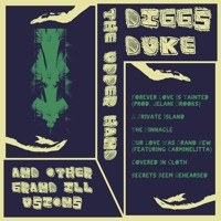 Diggs Duke - Secrets Seem Rehearsed
