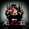 All You See (feat. Flava Flav)