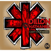 RHCP - Can't Stop (Dillon Nathaniel's Festival Bootleg)
