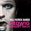 Hedwig and the Angry Inch - Wig In A Box
