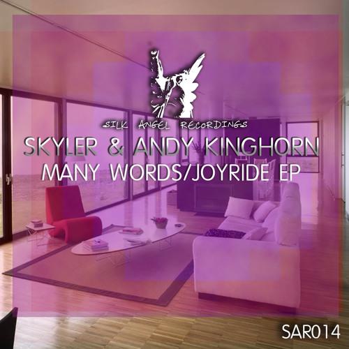 Andy Kinghorn - Skyler - Joyride - Many Words SAR014 EP