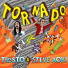 Tiësto & Steve Aoki - Tornado (Furashi Remix) Full song located in link!