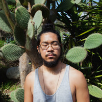 Mndsgn Txt (Msgs) Artwork