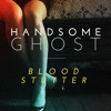 Handsome Ghost - The Trapeze Swinger (Demo)