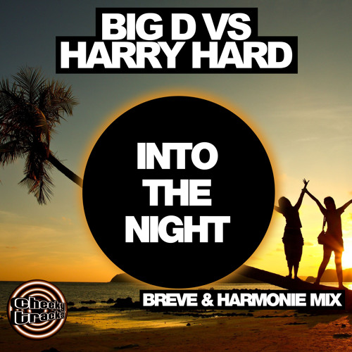 Big D vs Harry Hard - Into The Night (Breve & Harmonie remix) - OUT NOW